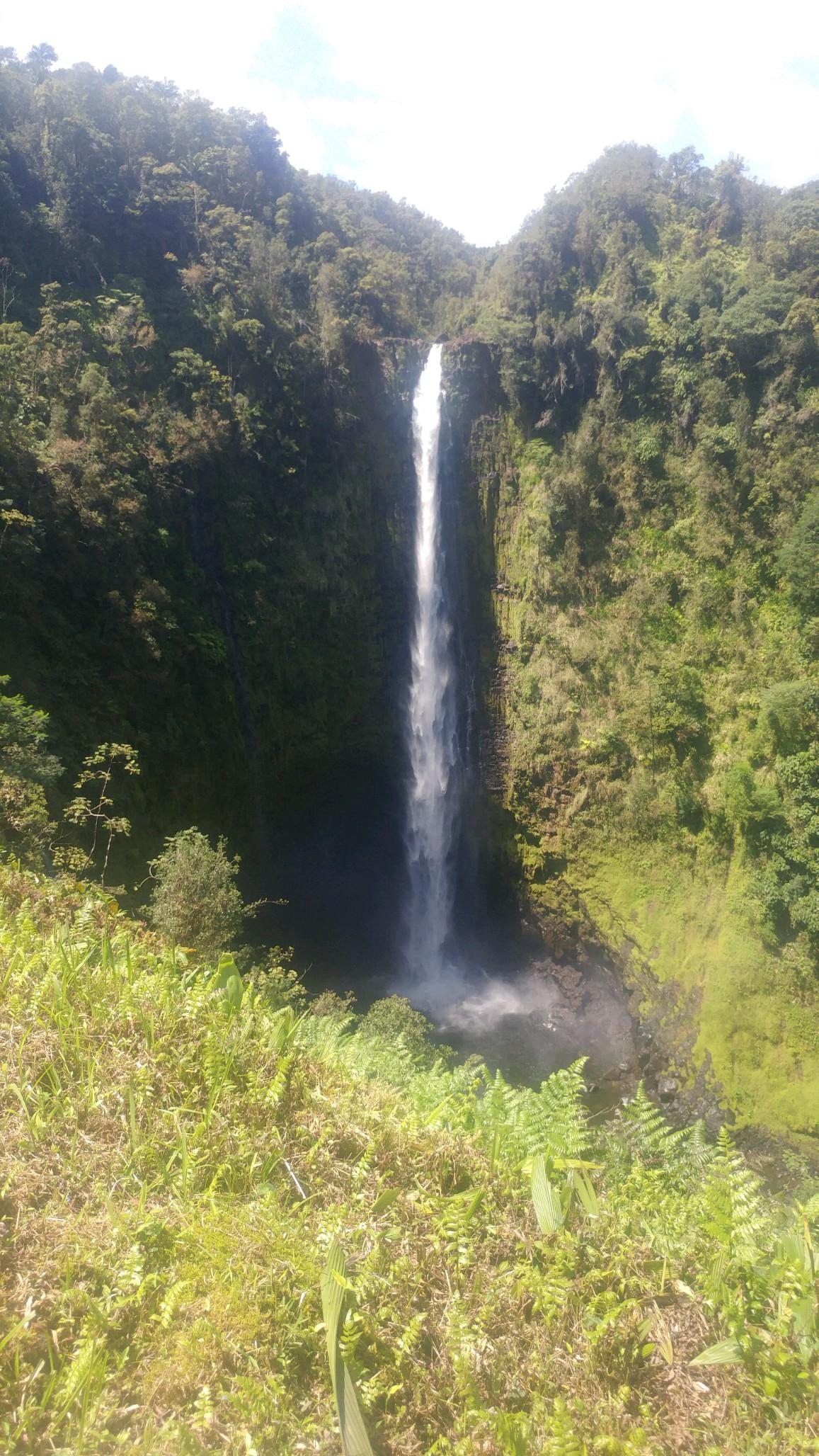 Hawaii Akaka